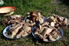 La carne è un pasto chirghiso tradizionale Fotografie Stock Libere da Diritti