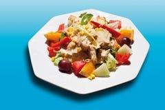 La carne asada del pavo con la ensalada mezclada, las frutas y el parmesano adentro plat Fotos de archivo libres de regalías