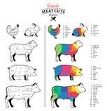 La carne británica corta diagramas Fotografía de archivo libre de regalías