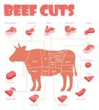 La carne de vaca del vector corta la carta ilustración del vector