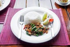 La carne di maiale ed il basilico in padella tailandesi sono servito con riso Immagini Stock Libere da Diritti