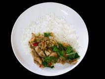 La carne di maiale fritta piccante con le foglie del basilico è servito con il riso del gelsomino spic Immagini Stock