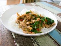 La carne di maiale fritta piccante con le foglie del basilico è servito con il riso del gelsomino spic Fotografie Stock Libere da Diritti