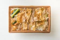 La carne di maiale ha affettato arrostito con stile tradizionale giapponese degli alimenti del riso e del sale in ciotola di plas Immagine Stock