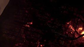 La carne en la parrilla frió en el Bbq caliente de los carbones almacen de metraje de vídeo