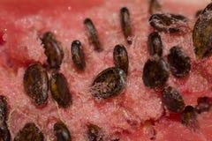 La carne rossa di un'anguria con i semi neri Fotografia Stock
