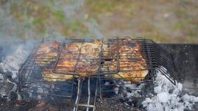 La carne se fríe en Mangal almacen de video