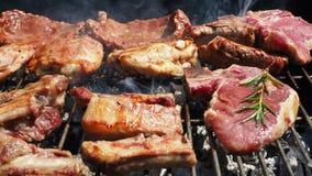 La carne succosa arrostita ha cucinato sopra i carboni su un barbecue video d archivio