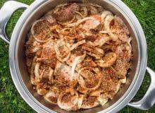 La carne suina incide gli spiedi del barbecue in spezie ed in cipolle Fotografia Stock