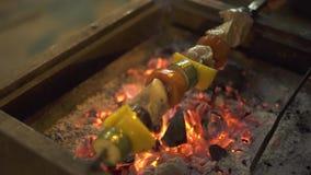 La carne y las verduras deliciosas asan en la parrilla de la barbacoa al aire libre Ciérrese encima de la carne y de la verdura d almacen de metraje de vídeo