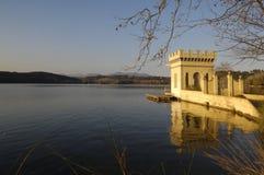 La Carpa de Or in  Banyoles Lake Royalty Free Stock Image