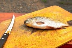 La carpe de poissons se trouve sur la planche à découper Image libre de droits