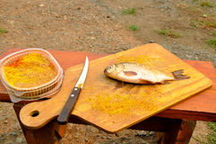 La carpe de poissons se trouve sur la planche à découper Photographie stock libre de droits