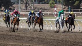 La carrera de caballos Foto de archivo