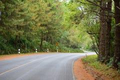 La carretera de asfalto de la curva doble está junto con bosque Fotos de archivo