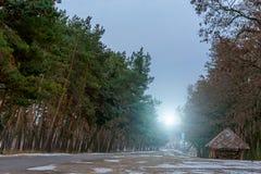 La carretera de asfalto en el bosque en invierno Cerca de la parada y de la muestra de autobús foto de archivo libre de regalías