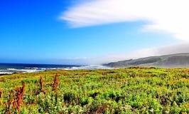 La carretera de la Costa del Pacífico en California fotos de archivo