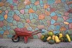 La carretilla y el calabacín viejos cosechan en el fondo de la pared de piedra Imagen de archivo