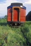 La carrozza ferroviaria abbandonata sulle piste invase con le erbacce e l'erba, monta piacevole, New York fotografia stock libera da diritti