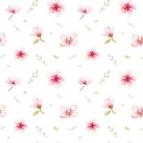 La carta da parati senza cuciture dell'acquerello con la ciliegia del fiore fiorisce, branc royalty illustrazione gratis