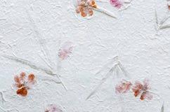 La carta del gelso bianco con il petalo e la foglia strutturano il fondo Immagini Stock