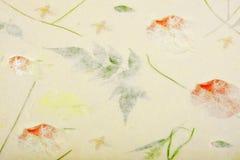 La carta del gelso con il fiore asciutto e la foglia strutturano il fondo Immagini Stock