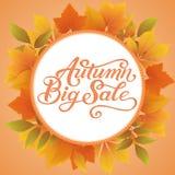 La carta di annuncio e dell'invito con la struttura floreale con le foglie e Autumn Big Sale di autunno manda un sms a Confine de Immagine Stock Libera da Diritti