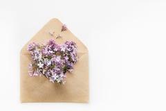 La carte blanche avec l'enveloppe ouverte de papier de métier a rempli de fleurs lilas pourpres de fleur de ressort s'étendant su Photo stock