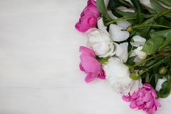 La carte décorative avec les pivoines blanches et roses fleurit photo libre de droits
