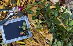 La carte d'amour de jardin avec des roses copient l'espace pour écrire le message Images stock