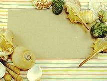 La carte d'espèce marine de saison de vacances d'été avec des coquilles et la copie espacent le fond Images stock
