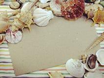 La carte d'espèce marine de saison de vacances d'été avec des coquilles et la copie espacent le fond Photos libres de droits