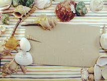 La carte d'espèce marine de saison de vacances d'été avec des coquilles et la copie espacent le fond Photo stock