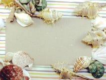 La carte d'espèce marine de saison de vacances d'été avec des coquilles et la copie espacent le fond Photo libre de droits