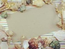 La carte d'espèce marine de saison de vacances d'été avec des coquilles et la copie espacent le fond Photographie stock
