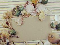 La carte d'espèce marine de saison de vacances d'été avec des coquilles et la copie espacent le fond Photographie stock libre de droits