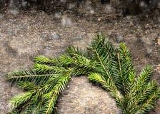 La carte de Noël avec la guirlande du sapin s'embranche avec la neige Image libre de droits