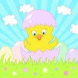 La carte de Pâques avec chiken Illustration de vecteur Photo stock