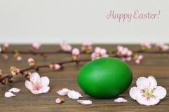 La carte de Pâques heureuse avec l'oeuf et le ressort de pâques fleurit Photographie stock