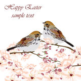 La carte de Pâques heureuse avec les oiseaux et le ressort fleurit Photo stock