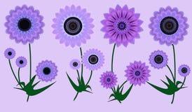 La carte de voeux avec s'est levée american national standard les fleurs que lilas sur la lumière se sont levé Photographie stock