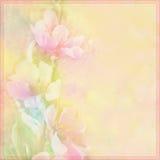 La carte de voeux florale avec la pêche fleurit sur le fond flou dans des couleurs en pastel Image stock