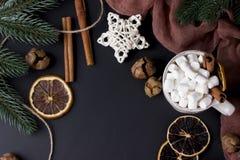 La carte de voeux de Noël avec des boules, des cônes et le sapin s'embranche photos libres de droits