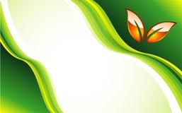 la carte disparaissent descripteur vert Image libre de droits