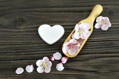 La carte heureuse de jour de mères avec le ressort fleurit dans le scoop en bois Photographie stock libre de droits