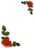la carte laisse des roses images libres de droits