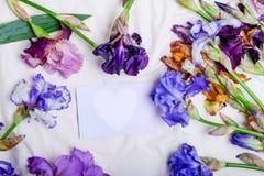 La carte vierge de vue supérieure avec le coeur blanc parmi le colourfull irise le fleur-De-luce sur le mauvais fond de feuille F Image libre de droits
