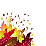 La cartolina d'auguri con l'autunno dell'iscrizione e la caduta disegnata a mano dell'acquerello va fondo arancio della foglia di royalty illustrazione gratis