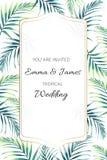 La cartolina d'auguri con la palma tropicale della giungla va su fondo bianco Carta per nozze, il compleanno e l'altra festa illustrazione di stock