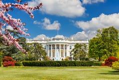 La Casa Bianca alla molla Fotografia Stock Libera da Diritti